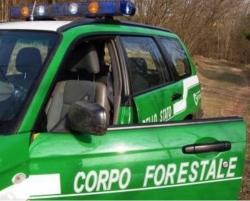 Corpo forestale, il tar Abruzzo 'impallina' soppressione. Atti alla Corte Costituzionale