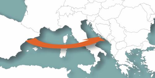 Corridoio V Barcellona-Civitavecchia: cosa guadagna l'Abruzzo?