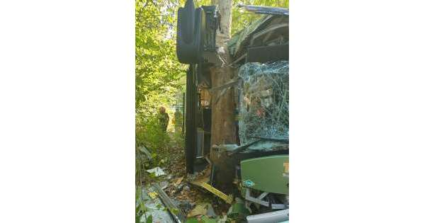 ANSA 18 09 2019 :                        Bus fuori strada nel Pescarese, feriti
