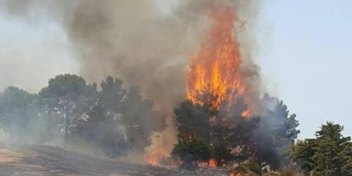 Valle Castellana (Teramo), ancora fuoco: tre ettari in fumo sulla provinciale