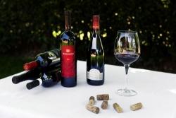 Vini abruzzesi da piazzare (al meglio) in Cina, si fa per davvero?