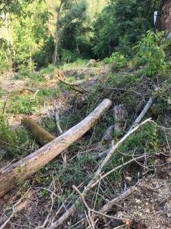 Parco Sirente-Velino: riperimetrazione, ma intanto scempio ambientale!