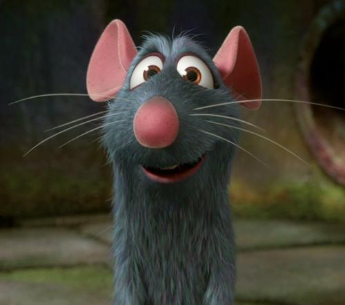 Il centralino non funziona, colpa dei topi