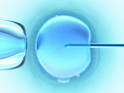 Un nuovo centro all'Aquila per la procreazione medicalmente assistita (Pma).
