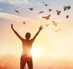 La libertà incostante