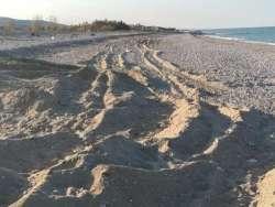 Pineto. Ruspe sulle spiagge, tra fratini e piante protette: ennesimo esposto della SOA