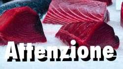 Casi di avvelenamento da tranci di tonno decongelato, allerta anche nel teramano