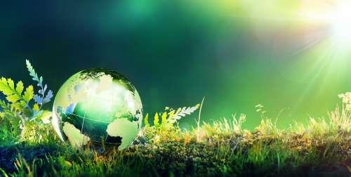 Stop all'impostura green, per tornare a ragionare e vivere. Pagando meno l'energia