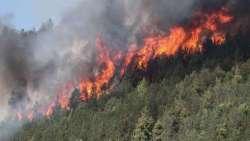 Incendi nel teramano: preoccupa il rogo di Altavilla a Montorio al Vomano. Popolazione evacuata
