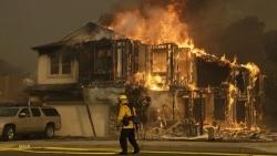 Usa: incendi in California, le vittime salgono a 13 gli edifici distrutti sono oltre 1500