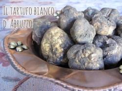 Che succede al tartufo bianco d'Abruzzo? Prezzi alle stelle