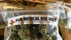 Il caso (politico-giudiziario) Pellegrini e l'ostracismo all'uso terapeutico della cannabis