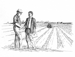 Chi sono i nuovi membri del Collegio Provinciale degli Agrotecnici di Teramo