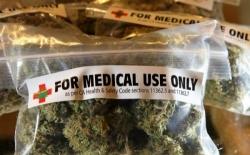 Messico: in vigore il decreto che rende legale la cannabis terapeutica
