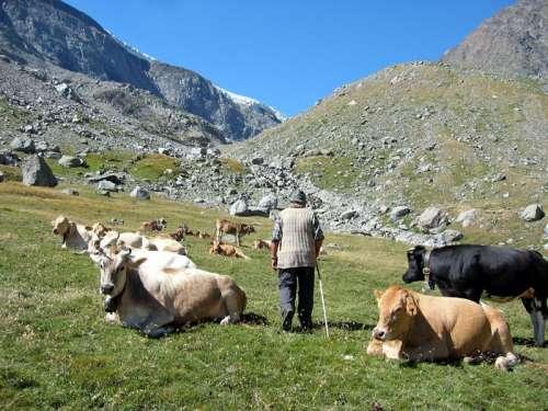 Tutti i quesiti degli agricoltori abruzzesi a Tajani