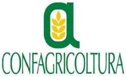 Meno terra coltivata: l'allarme di Confagricoltura Abruzzo