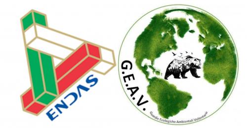 Pescara: che c'è scritto nell'accordo fra le Guardie Ecologiche
