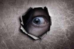 La versione di Garpez: paura di vivere e libertà di stalking