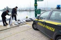 Sequestrati 20 tonni pinna rossa: pescati di frodo sul Saline