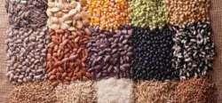 NeoRuralità: verso un'agricoltura sociale e di comunità