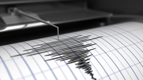 Terremoto, Pezzopane: