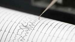 Romagna, terremoto sulla costa: 4.6 e scuole chiuse