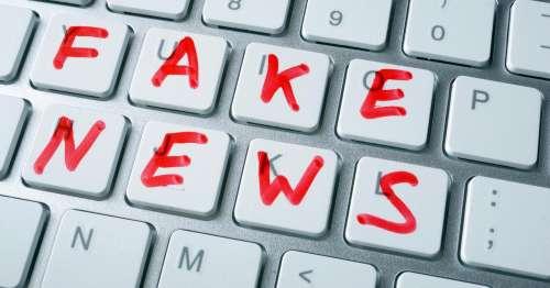 Fake news, 'fare rete per bonificare la rete'