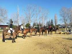 Sport equestri, 6 nuovi stage gratuiti per Under 21