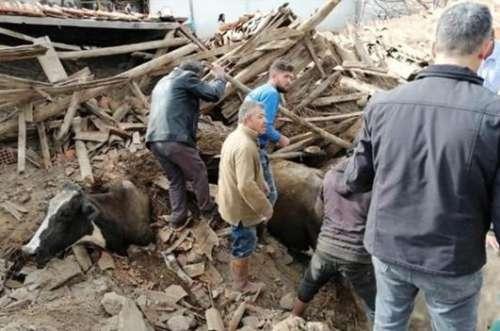 Terremoto in Turchia: 80 scosse (5,6 Richter)