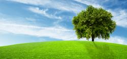 Fondo Ambiente Italiano, al via le Giornate Fai di Primavera