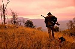Wwf scrive a governatori e ministro ambiente: necessario stop alla caccia
